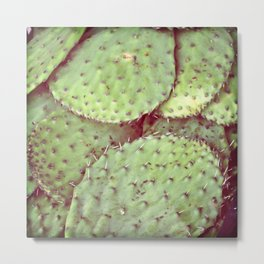 cactus leaves Metal Print