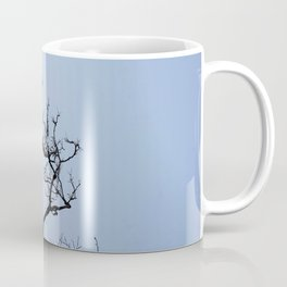 Stretching dark bare branches and blue sky Coffee Mug