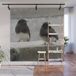 Young Black Phoebes Wall Mural