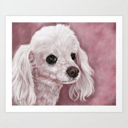 White Poodle Painting Portrait Art Print