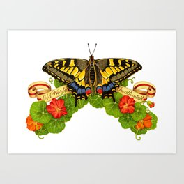 Old World Swallowtail Butterfly Art Print