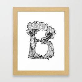 "Native Texas Plants ""B"" Framed Art Print"