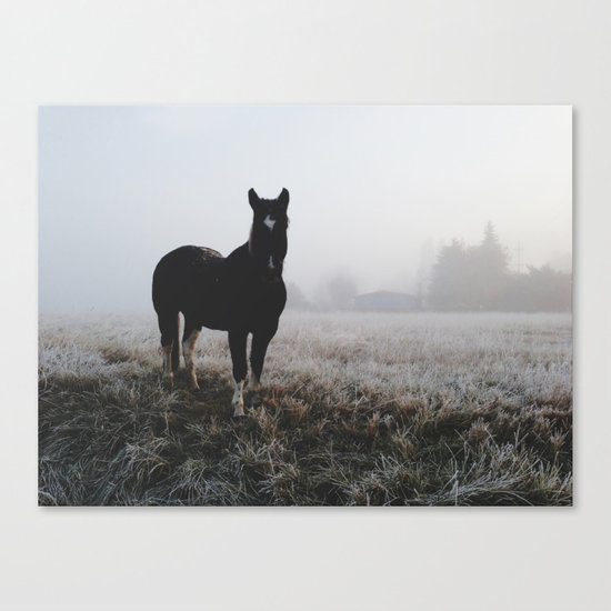 Frosty Klamath Horse Canvas Print