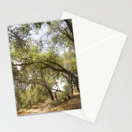 Follow The Tree Lined Trail Stationery Cards