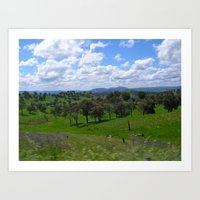 New South Wales Countryside Art Print