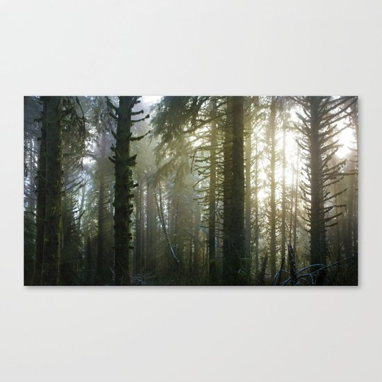 Foggy Forest #evergreen Canvas Print