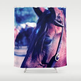 Horse-1-Blues Shower Curtain
