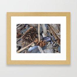 treasures found Framed Art Print