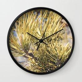 Pinus resinosa Details Wall Clock