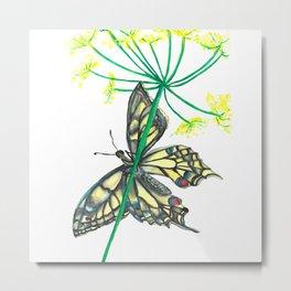 Butterfly Blue Yellow & Black Metal Print