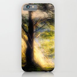 Misty Solitude, The Way Through The Woods iPhone Case