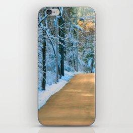 Dashing Thru The Snow iPhone Skin