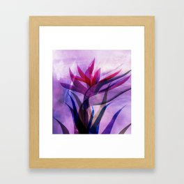 the call of the flora Framed Art Print