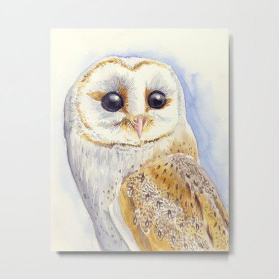 Owl bird Metal Print
