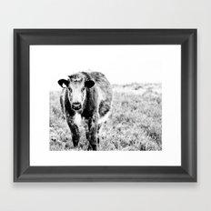 Bovine B&W Framed Art Print