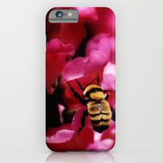 Busy Bumblebee iPhone 6s Slim Case