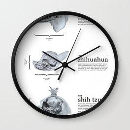 Dog Skull Comparison Wall Clock