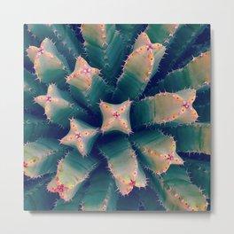 California Cacti Metal Print