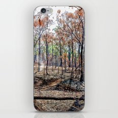 Fire damaged forest iPhone & iPod Skin