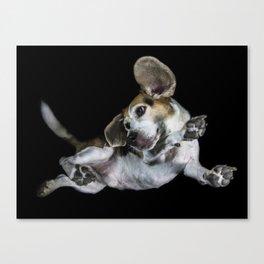 Underdogs Project Beagle Canvas Print