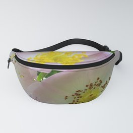 Group of flowers with light petals and yellow and brown pistils Fanny Pack