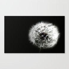 Black and White Flower Macro photography monochromatic photo Dandelion Whimsical Modern Canvas Print