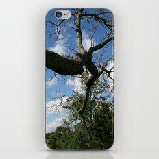 Landscape iPhone & iPod Skin