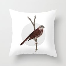Messenger 001 Throw Pillow