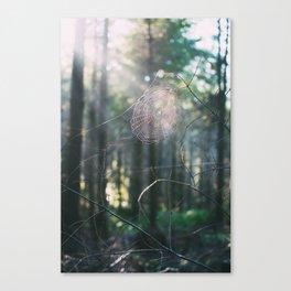 Morning Webs Canvas Print