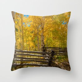 Aspen Autumn Color I - Southern Utah Throw Pillow