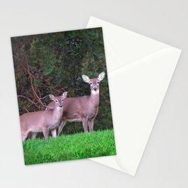 Deer Pair PhotoArt Stationery Cards