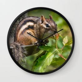 Summer Chippy Wall Clock