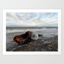 Driftwood And Ice in Spring Art Print