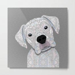 Cute White Boxer Metal Print