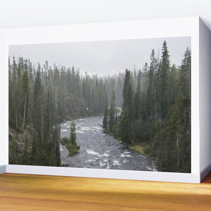 Yellowstone Forest - Nature Photography Wall Mural