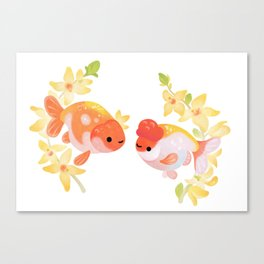 Ranchu and Forsythias Canvas Print