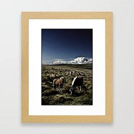 A DARTMOOR FAMILY Framed Art Print