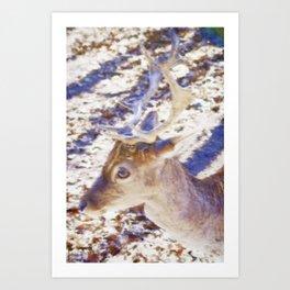 Nippon Stag Art Print