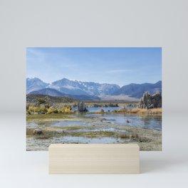 Mono Lake Tufa, No. 5 Mini Art Print