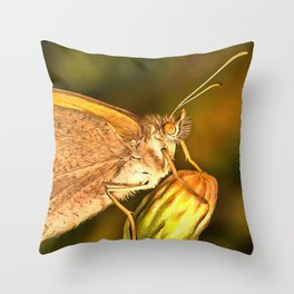 Meadow Brown Beautiful Butterfly Portrait Throw Pillow