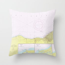 Vintage Lake Erie Coast Map (1965) Throw Pillow