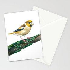 Hawfinch bird Stationery Cards
