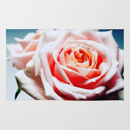 Adorable White and Pink Rose Rug