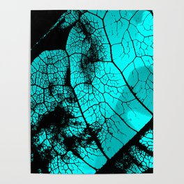 Aqua leaf Poster