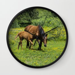Young foal horse walking next to its mother in a field Wall Clock