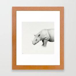 Dicerorhinus sumatrensis / Sumatran Rhinoceros Framed Art Print