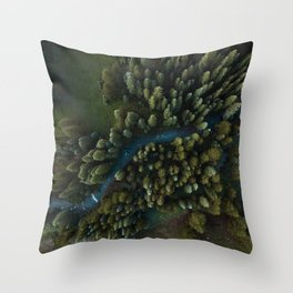 Arial View of River Throw Pillow
