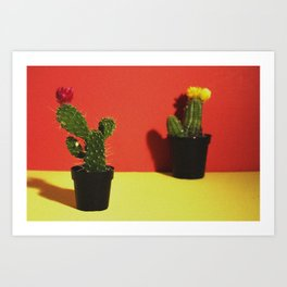 Red and Yellow Cactus Art Print