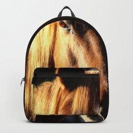 Golden Arabian Pony Portrait Backpack