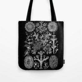 Lichens(Lichenes) by Ernst Haeckel Tote Bag